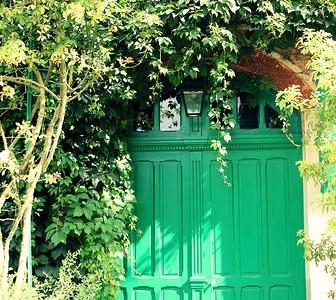 As flores do jardim de Claude Monet